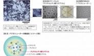富士フイルム、ニキビ対策の新成分「アクネシューター」開発