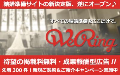 wering_promotion_banner (1)