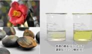 【9】 植物性シリコーン開発、枝毛、頭皮ケア同時に実現~サティス製薬(中)
