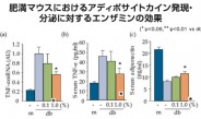 酵素「エンザミン」メタボリックシンドロームへの有用性を論文発表