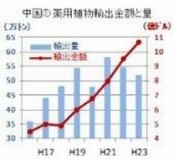 中国の薬用植物輸出