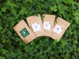 トウキ茶畑背景201507