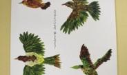 『機能性表示食品制度 GUIDE BOOK』を発刊