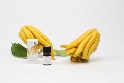希少な仏手柑のアロマ/酒造りの蒸留技術で開発