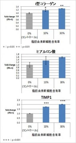 コラーゲン、ヒアルロン酸、TIMPIの能力向上