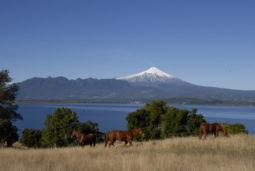 チリの風景