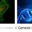 育毛研究×遺伝子検査のパイオニア 薄毛の要因を共同研究