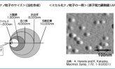 ⑯ナノキャリア(上) ~ミセル化ナノ粒子技術で新薬・化粧品等開発~