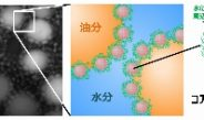 油分・水分を自在に混ぜる新乳化技術「コアコロナ乳化」を開発