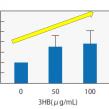 大阪ガス、ケトン体3HB素材を化粧品市場にサンプル提供
