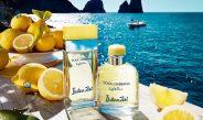 ドルチェ&ガッバーナ カプリの夏を表現した爽やかなフレグランス