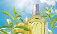 ロクシタン 爽やかな香り「シトラスヴァーベナ」から新商品
