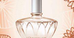 水の精が奏でるクリアな香り ロクシタン「オード ニンファ」