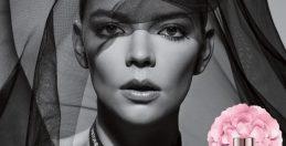 ヴィクター&ロルフ、新作フレグランスの顔に米女優アニャ・テイラー=ジョイ任命