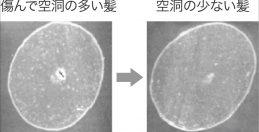 ⑬美髪技術、花王・日華が髪の空洞補修技術開発(上)